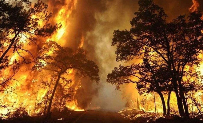 At least 35 die in wildfires in the three U.S. West states