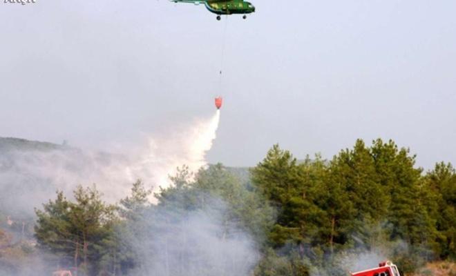 Muğla'da kaza yapan araçtan çıkan yangın ormana sıçradı