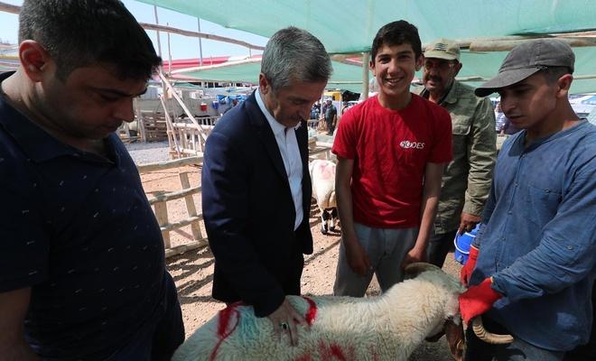 Gaziantep'te dar gelirli ailelere kurbanlık desteği verilecek