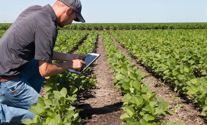 Tarım ve Orman Bakanlığı'nca belge ve izinlerde elektronik başvuru kolaylığı
