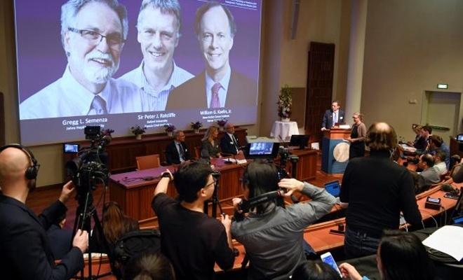 Nobel Tıp Ödülü'nün kazananları belirlendi