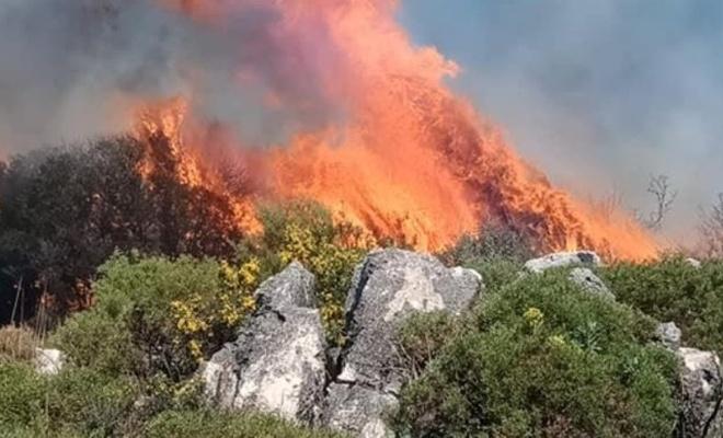 Muğla'da orman ve makilik alanda çıkan yangın söndürüldü