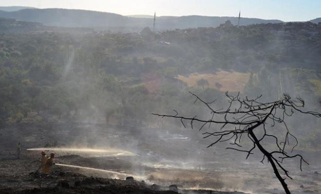 Manisa'da orman yangını söndürüldü