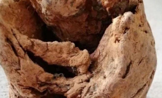 Fosil zannettiler bomba çıktı
