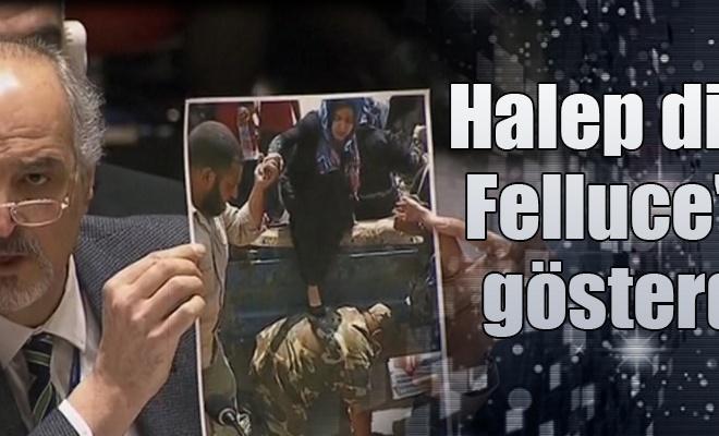 Halep diye Felluce`yi gösterdi
