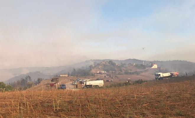 Adana'da orman yangınına müdahale devam ediyor