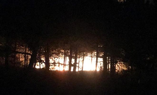 Malkara'da orman yangını