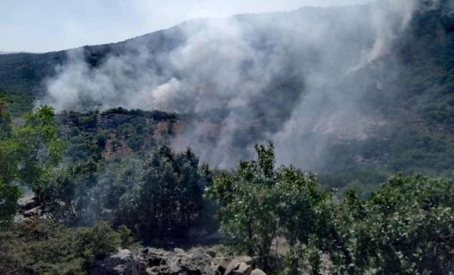4 gündür devam eden orman yangını hala söndürülemedi