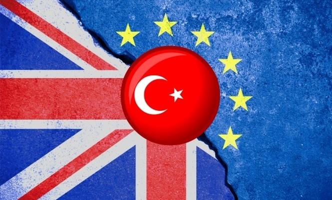 İngiltere AB ile ticarette Türkiye`yi örnek alacak