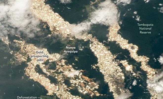 Amazon'da altın nehirler ortaya çıktı