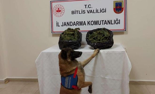 Bitlis'te uyuşturucu operasyonu: 4 gözaltı