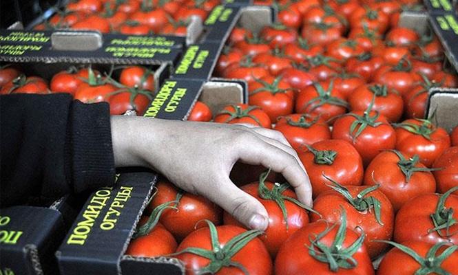 Rusya, domates ithalatı için tarih verdi