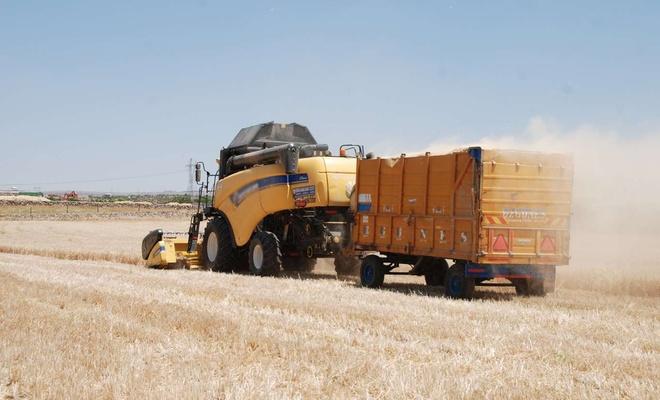 Kuraklıktan büyük zarara uğrayan çiftçi devlet desteği bekliyor