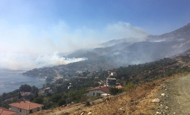 Marmara Adası'nda çıkan yangın kontrol altına alınamıyor