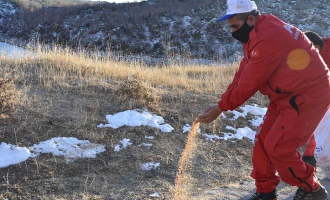 Nemrut Krater Gölü'ne yaban hayvanları için yem bırakıldı
