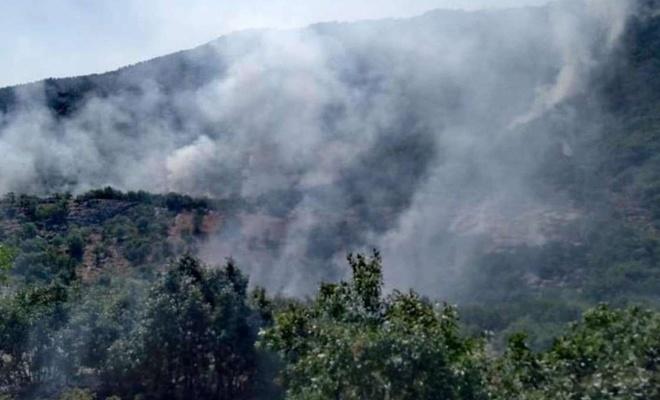 İtalya'daki yangın şu ana kadar 20 hektar araziye zarar verdi