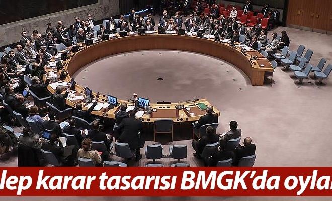 Halep karar tasarısı BMGK`da oylandı