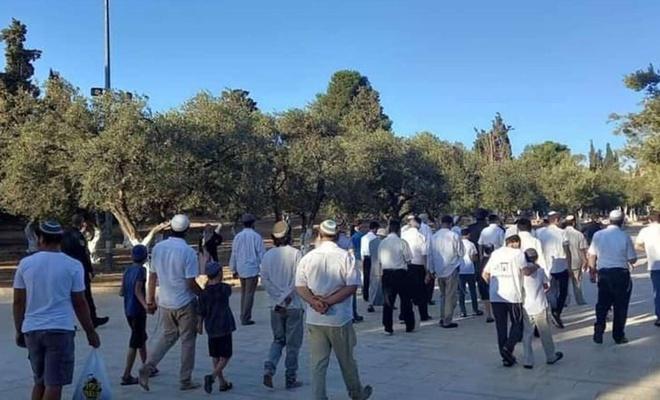 Siyonistên terorîst û îşxalker di ser Mescîda Eqsayê de girtin