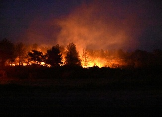 450 hektar alan yandı