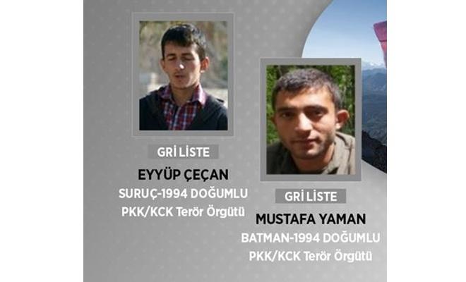 Gri listede yer alan 2 PKK'li öldürüldü
