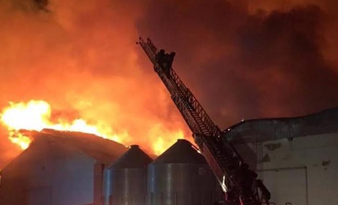 مصرع 43 شخصا إثر حريق في الهند
