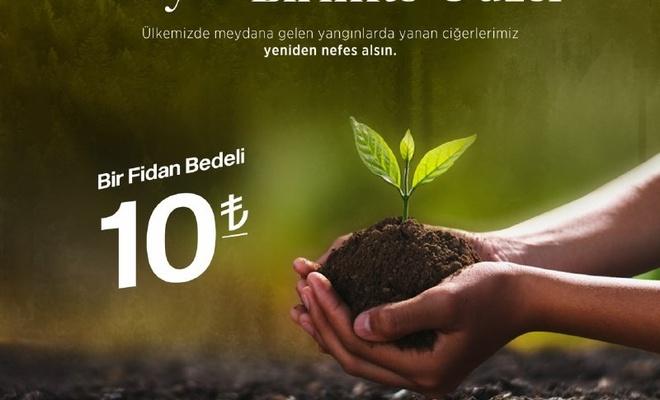 Umut Kervanı'ndan yanan ormanlar için ağaç bağış kampanyası
