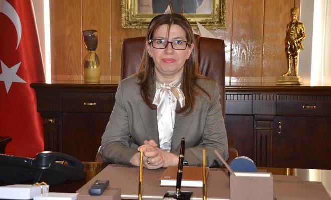 Sinop Valisi görevden alındı, albay eşi de gözaltında