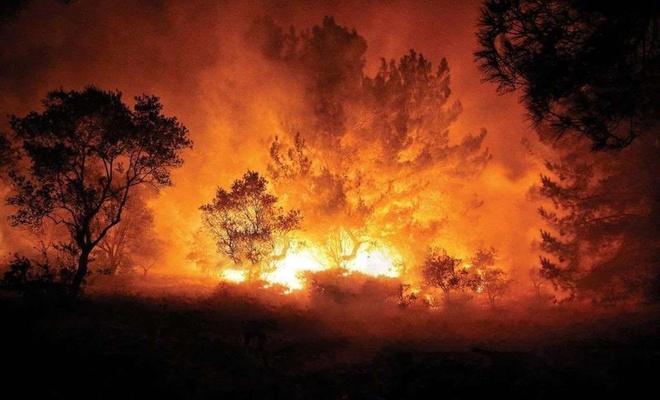 Hatay'daki yangınları PKK üstlendi
