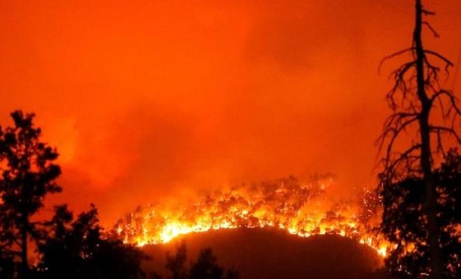 İran'da yangın: 200 hektar ormanlık alan zarar gördü