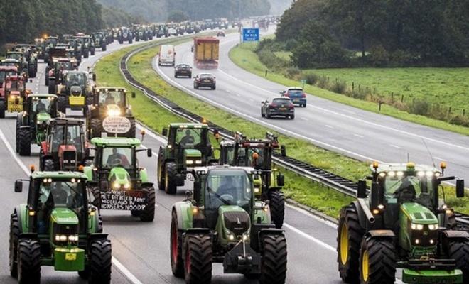 Hollanda'da çiftçilerden hükümetin politikasına protesto