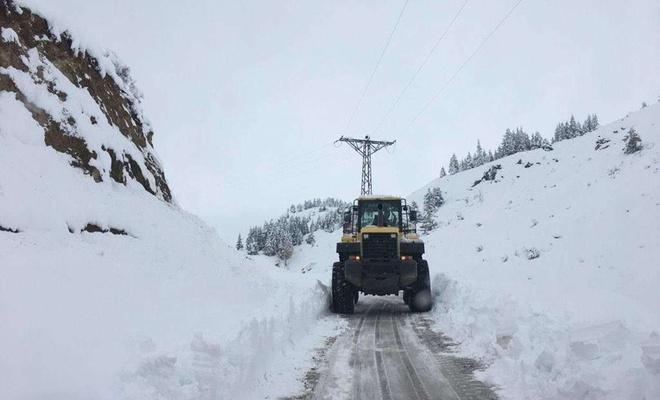 Muş'ta kar ve tipi nedeniyle 159 yerleşim biriminin yolu kapalı