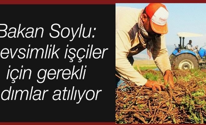 Bakan Soylu: Mevsimlik işçiler için gerekli adımlar atılıyor