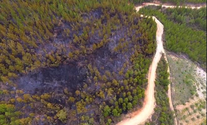 İki ayrı ilçede aynı gün yanan ormanlar havadan görüntelendi