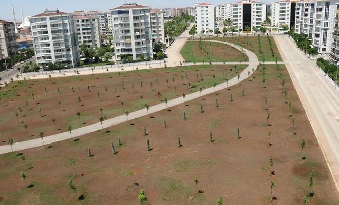 Atıl durumdaki araziyi parka çeviren belediye İslam bilgini El-Cezeri'nin ismini verdi