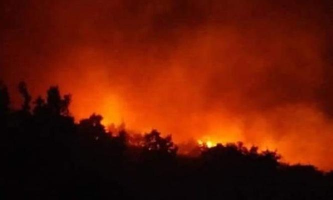 Adıyaman`da orman yangını
