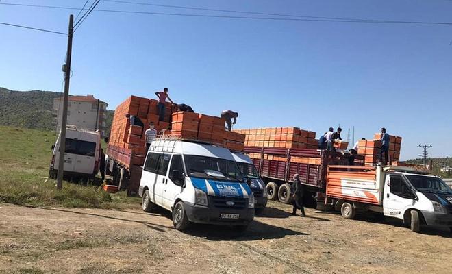 Adıyaman'da çiftçilere arı kovanı dağıtıldı