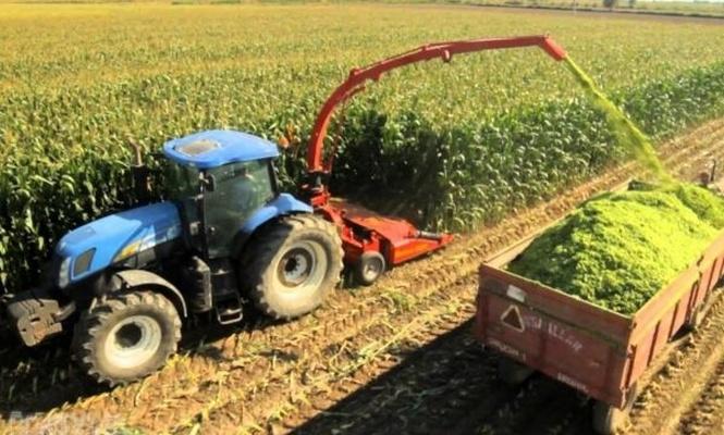 İyi Tarım Uygulamaları destekleme müracaatları başladı
