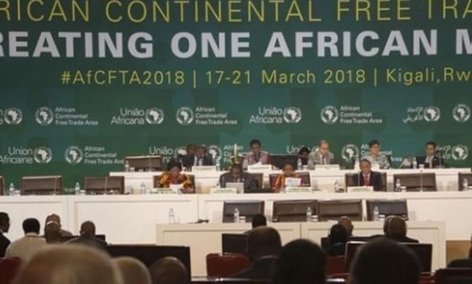 Afrika ülkeleri dünyanın en büyük projesine imza attı