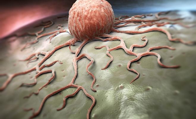 Alkol kullanımı geçen yıl 700 binden fazla kanser vakasına yol açtı