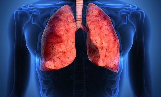 Akciğere ilaç gibi gelen gıdalar