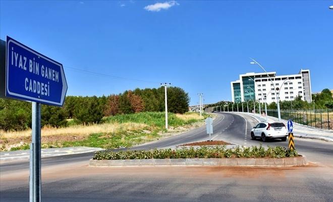 HDP'li belediye caddeye PKK'linin adını verdi