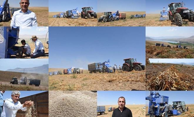 Bitlis fasulye üretiminde Türkiye'de söz sahibi