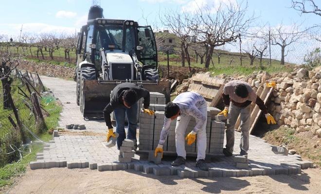 Siirt Belediyesi bağ yollarında başlattığı asfalt ve parke çalışmalarına devam ediyor