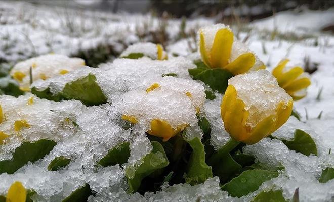 O ilimizde Mayıs ayında kar yağışı!
