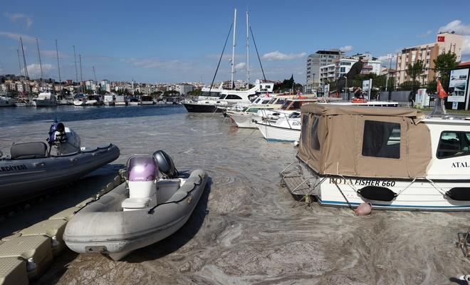 Marmara Denizi'ndeki müsilaj yayılıyor