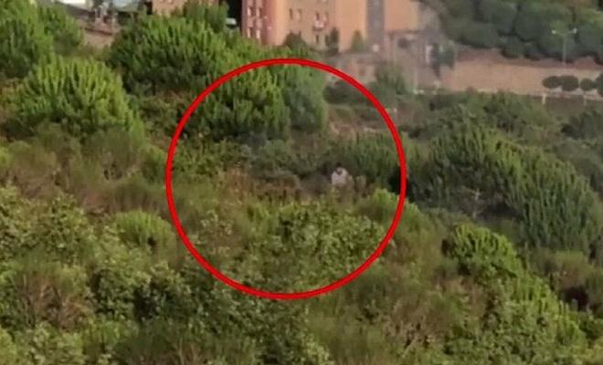 Aydos Ormanını yakan kişiye ceza yağdı
