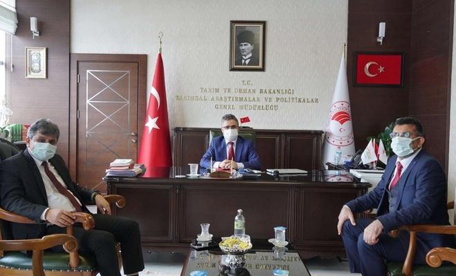 Siirt Üniversitesi'nin hayvancılık alanındaki atılımları devam ediyor