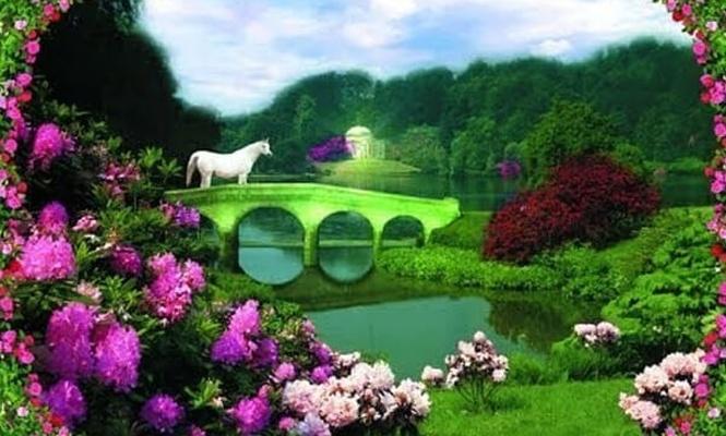 Cennet Komşusu