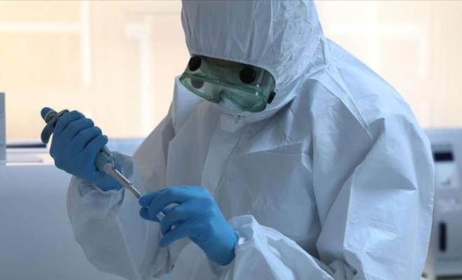 Koronavirüs İslam dünyası listesi