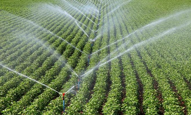 Bu yöntemle sulama yüzde 60 daha tasarruflu!